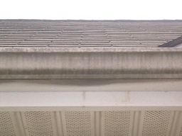 Look at the black streaks on this gutter!